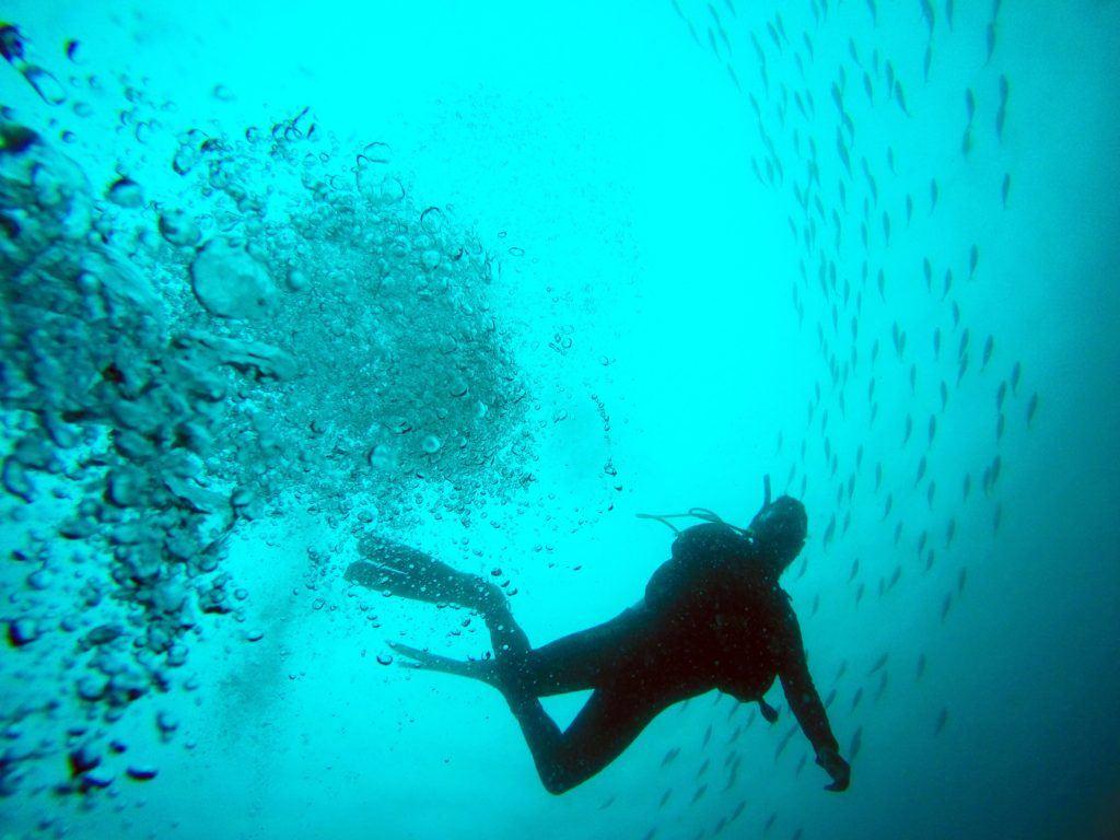 dykkercertifikat i århus 12