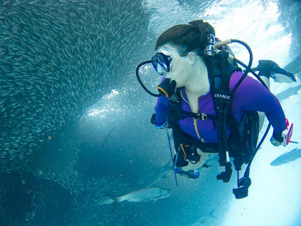 dykkercertifikat odense 10